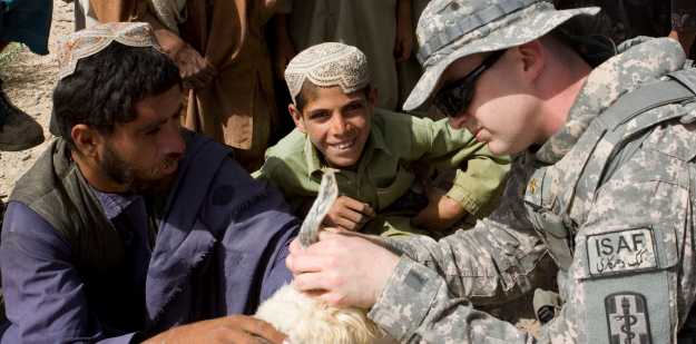 Description: U.S. Army veterinary corps officer examines a goat in the field