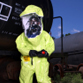 Chemical, Biological, Radiological, and Nuclear (CBRN) Specialist (74D)